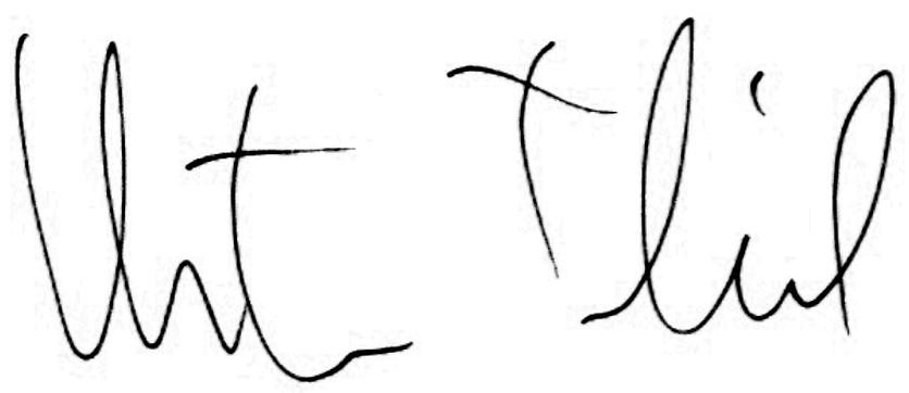 Unterschrift ct 2